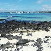A Day Under $100: Isla Santa Cruz - Version C
